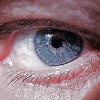 L'oeil d'Eric Bouvet