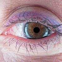 L'oeil de Pascale Meynial